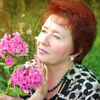 irina, 60, г.Минск