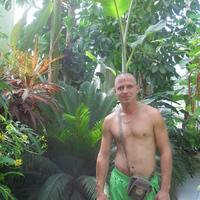 дима, 37 лет, Козерог, Сочи