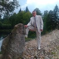 Владимир, 34 года, Лев, Ковров