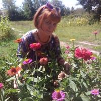 Таша, 66 лет, Дева, Славянск-на-Кубани