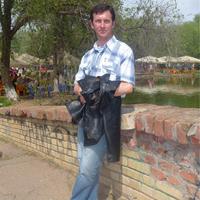 Андрей, 47 лет, Стрелец, Волгодонск