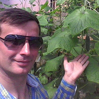 Антон, 39 лет, Дева, Оренбург
