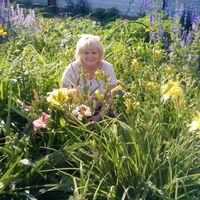 Татьяна, 62 года, Весы, Борисполь