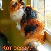 Алекс 45 Краснодар