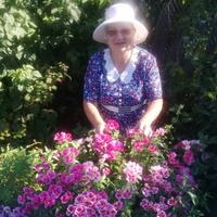 Татьяна, 64 года, Козерог, Рязань