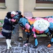 Светлана, 57, г.Сегежа