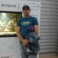 андрей, 38 лет, Телец, Воронеж