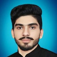Ali Jutt, 30 лет, Козерог, Исламабад