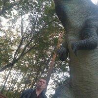 александр, 37 лет, Дева, Владивосток